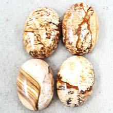 18X25 PICTURE JASPER (4PCS/BAG)