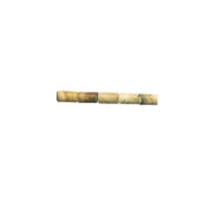 PICTURE JASPER 3X5MM TUBE
