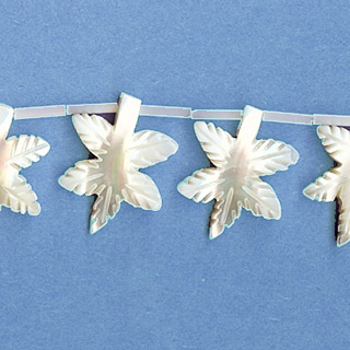 MOP(WHITE) 5PCS MAPLE LEAF  20X25MM