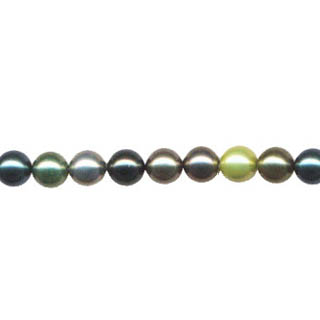 SHELL PEARL DK MULTI 8MM ROUND