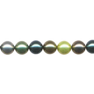 SHELL PEARL D.MUTIL 12MM ROUND