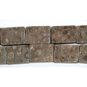 FOSSIL STONE RECTANGLE 15X21MM