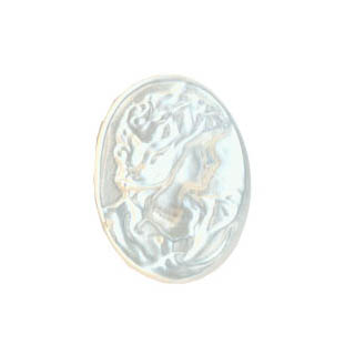 WHITE SHELL CAMEL 15X20MM